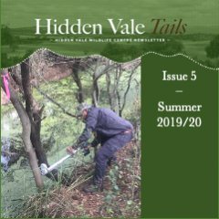 Hidden Vale Tails - Issue 5 Summer 2020